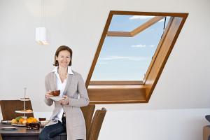 Dachtechnik Unger_Fenster III